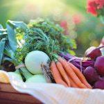 Ziektebeelden & Natuurlijke voeding