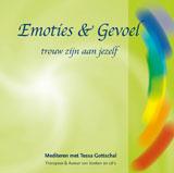 cover_emotiesengevoel_Tessa Gottschal