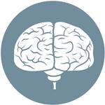 Darmmicrobioom: invloed op hersenen