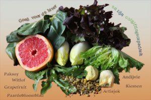 Gezondheidsvoordelen van de komkommerfamilie