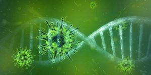 De niet-specifieke immuunrespons