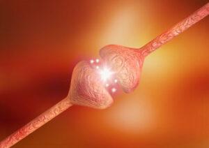 Verhoogd risico op Sjögren bij fibromyalgie
