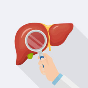 Leververvetting voedingsbodem voor coronavirus